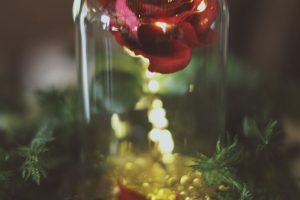 fairytale-disney-beauty-and-beast-rose-wedding.jpg