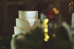 wedding-cake-mapping-fairytale-rose.jpg